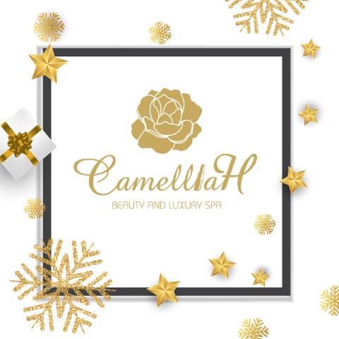Giới thiệu Camellia H